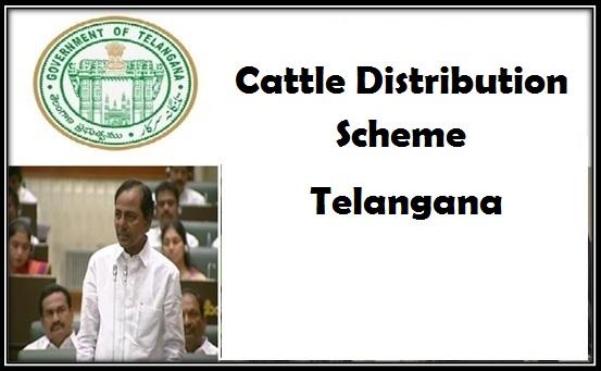 Cattle Distribution Scheme in Telangana