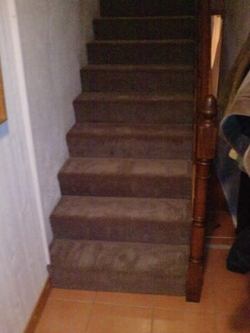 Mick-Joan-at-Le-Bouchaud-stair-carpet1-Small