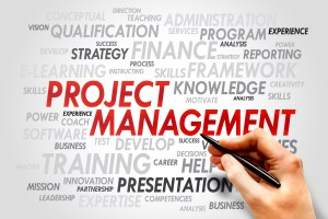 What it PMI & PMP in Project Management