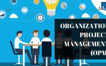 organization project management - Organization Project Management (OPM)