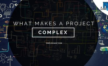what makes a project complex - What makes a project complex?