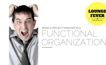 being a project manager in a functional organization - Being a Project Manager in a Functional Organization