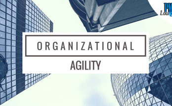 organizational agility - Organizational Agility | How Kodak went out of business but McDonalds stayed due to their agility