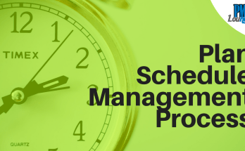 plan schedule management process in pmp - Plan Schedule Management Process