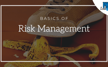 the basics of risk management - Risk Management - The Basics