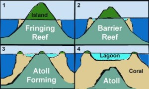 Coral Reef: Fringing Reef, Barrier Reef & Atoll | PMF IAS