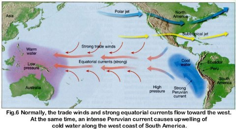 normal conditions in pacific ocean