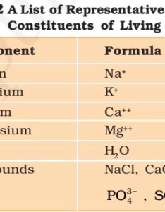 Primary and secondary metabolites also vitamins minerals deficiency diseases pmf ias rh pmfias
