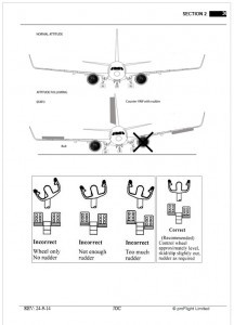 single engine 737 simulator