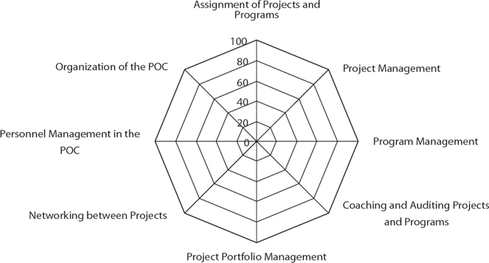 Assessment competences project oriented companies maturity