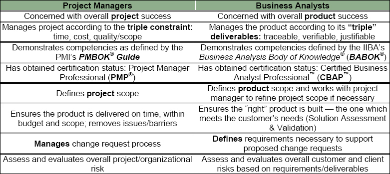 Blind Spot Elimination Business Analysts Project Risk
