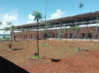 External works - grass and trees plantation Central court