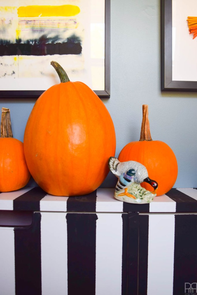 close up of pumpkins on a black and white dresser