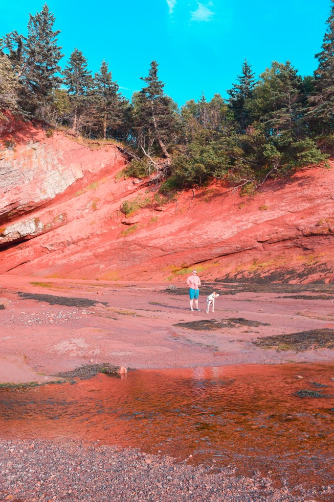man and dog standing in the St. Martins sea caves