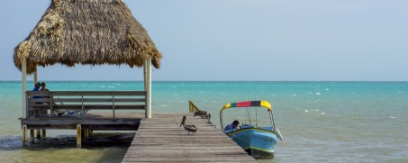 Jim and Phyllis Johnson have donated yet another trip for 2 to their beautiful Blue Bonefish Lodge in Belize or Alaska Naknek River Camp.
