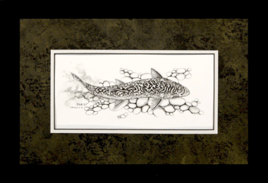 """David Ruimveld art for the chapter entitled """"The Last Brook Trout"""" within Bob Linsenman's book """"Water Songs."""" This original black and white painting is framed with a textured black & gold matting and a white inner mat in black frames. Conservation clear glass. Frame size is 13"""" x 19""""."""
