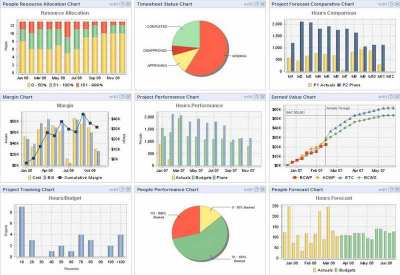 PROGRAM MANAGEMENT PROFESSIONAL (PGMP)