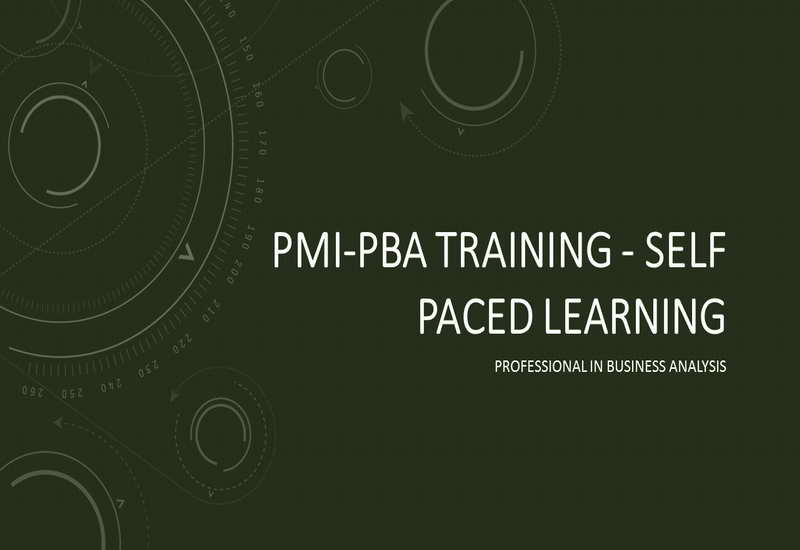 PMI-PBA Online Self Paced Training Course