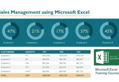 Sales Management using Microsoft Excel 1