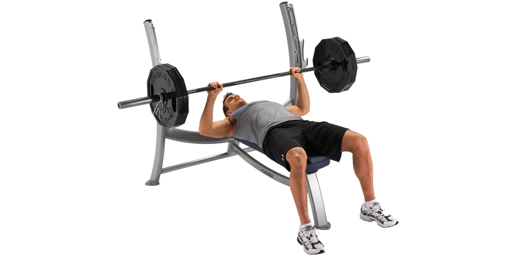 exercise bench png transparent