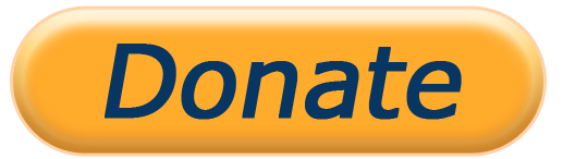 Image result for paypal donate button