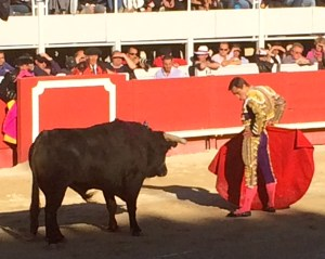 The Matador taunts the wounded bull before he administers the death thrust.