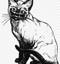 cat clipart black and white real cat clipart black and white hd png download [ 840 x 1136 Pixel ]