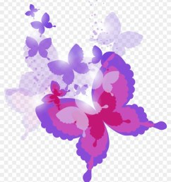 pink and purple butterflies clipart hd png download [ 840 x 995 Pixel ]