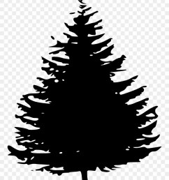 pine tree silhouette png png download pine tree clipart free transparent png [ 840 x 1104 Pixel ]