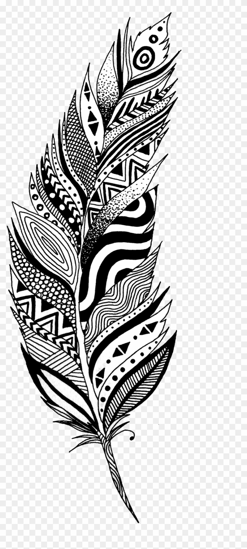 Black And White Feather Tattoo Design Black And White Feather Clipart Hd Png Download 1024x1955 6288878 Pngfind
