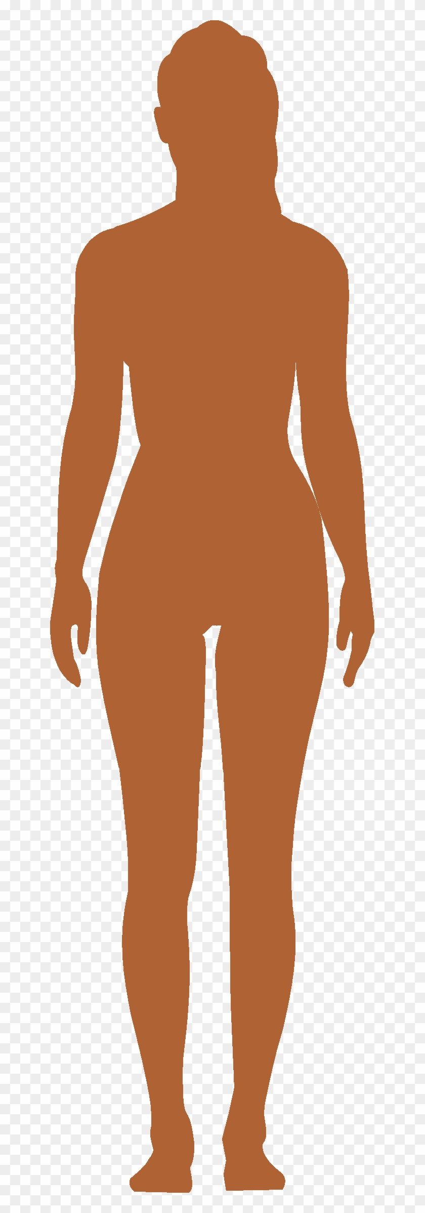 Body Png Picture Female Body Vector Png Transparent Png 641x2315 818446 Pngfind