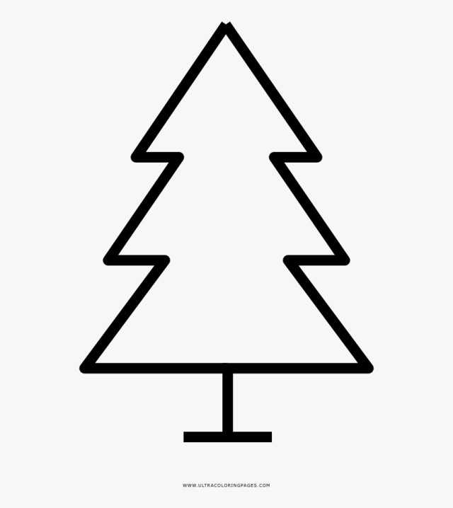 Christmas Tree Coloring Page - Printable Evergreen Tree Template