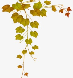 decorative clipart falling leave fall leaves png [ 820 x 1274 Pixel ]