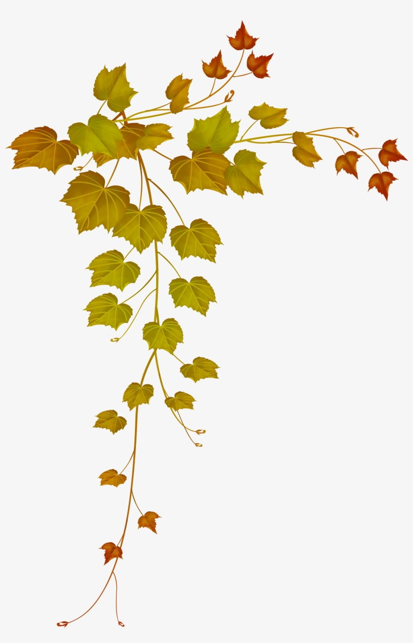 medium resolution of decorative clipart falling leave fall leaves png