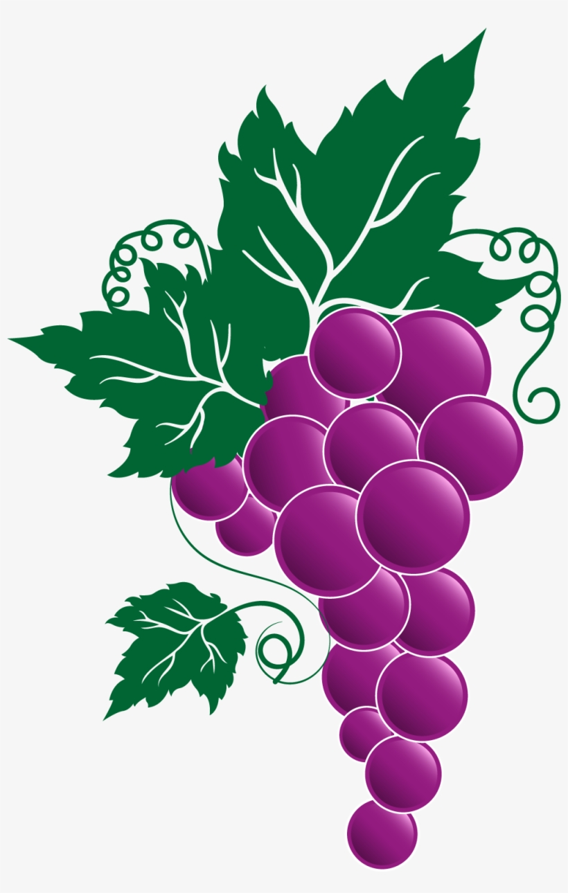 hight resolution of grape png transparent free images transparent grape vine clipart