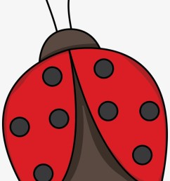 red ladybug png photo lady bug clipart png [ 820 x 1241 Pixel ]