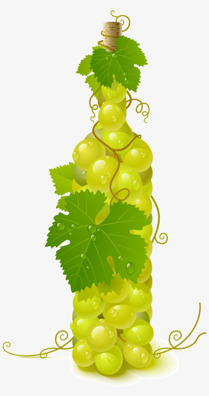 medium resolution of grapevine clipart pattern grapes vector