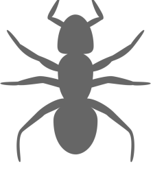 banner download ant clipart black and white ant clip art 958x958 png [ 855 x 939 Pixel ]