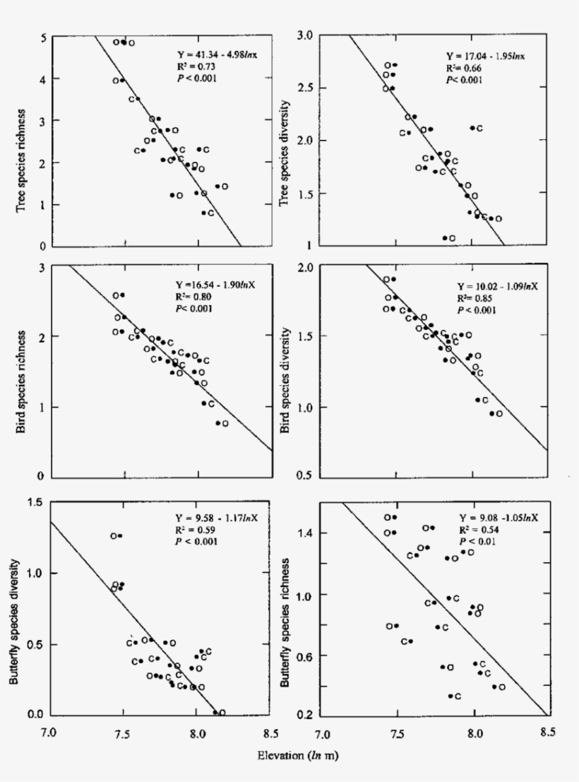 hight resolution of simple regression comparison of woody tree bird and diagram