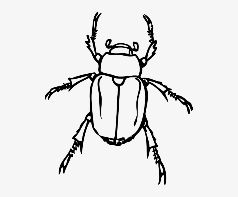 Printable Coloring Pages Vw Bug Portraits Vw Beetle