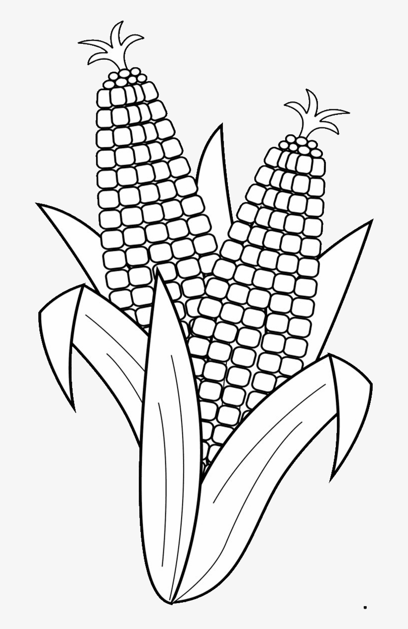 19 Corn Clip Black And White Drawing Huge Freebie Download