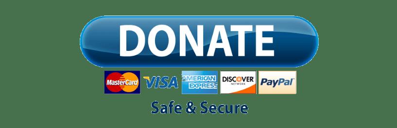 Paypal Donate Button Transparent Png Png Mart