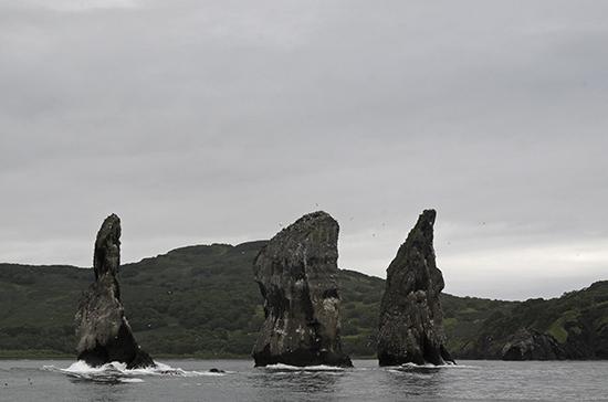 Власти рассматривают три причины загрязнения воды у берегов Камчатки