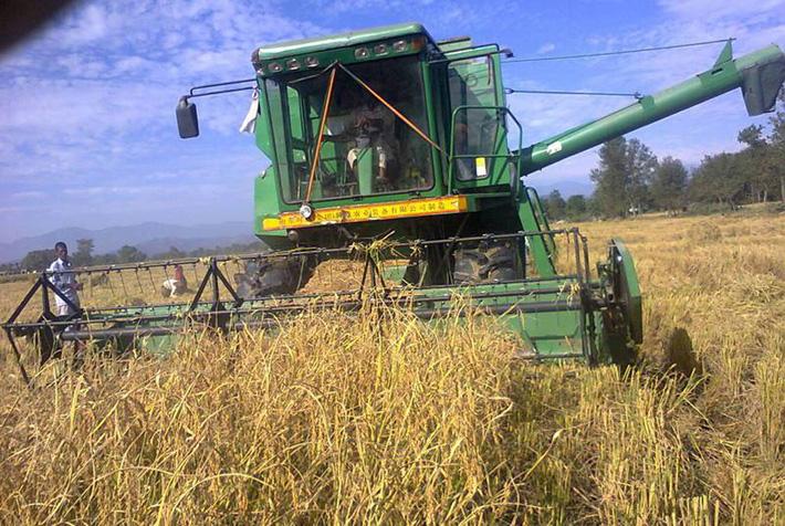 युवालाई कृषि पेशातर्फ आकर्षित गर्न आधुनिक प्रविधिको प्रयोगमा जोड दिनुपर्ने