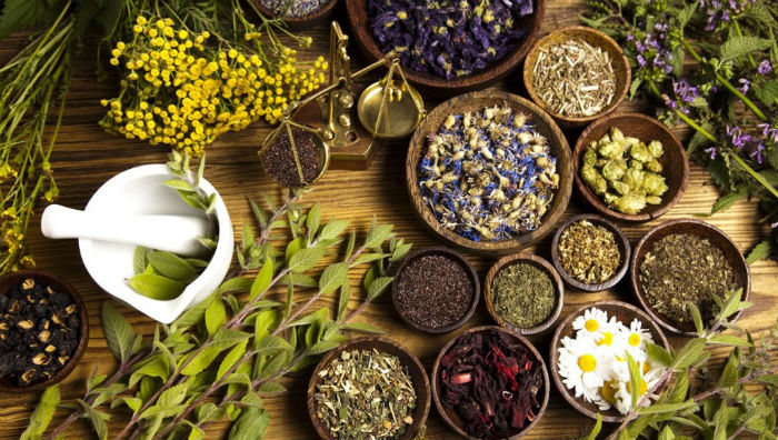 भान्सामै औषधि : यी हुन् आपतकालिन उपचारमा प्रयोग हुने ११ जडिबुटी
