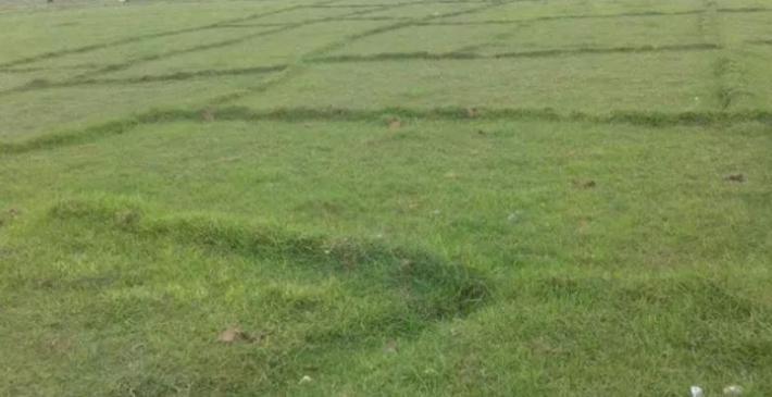 मौलाएको भू–माफियातन्त्रः सरकारी जमिनमा शहर