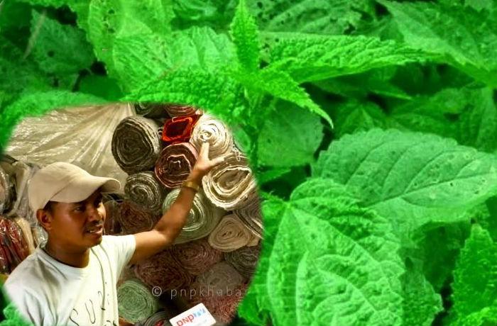 गरे के हुँदैन नेपालमा : सिस्नुको लुगा बेचेरै करोडपती बने बाजुराका खडक सिंह