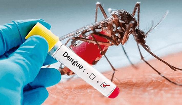 भक्तपुरमा बढ्दै डेंगु सङ्क्रमित, १९७ मा डेंगु भएको पुष्टि