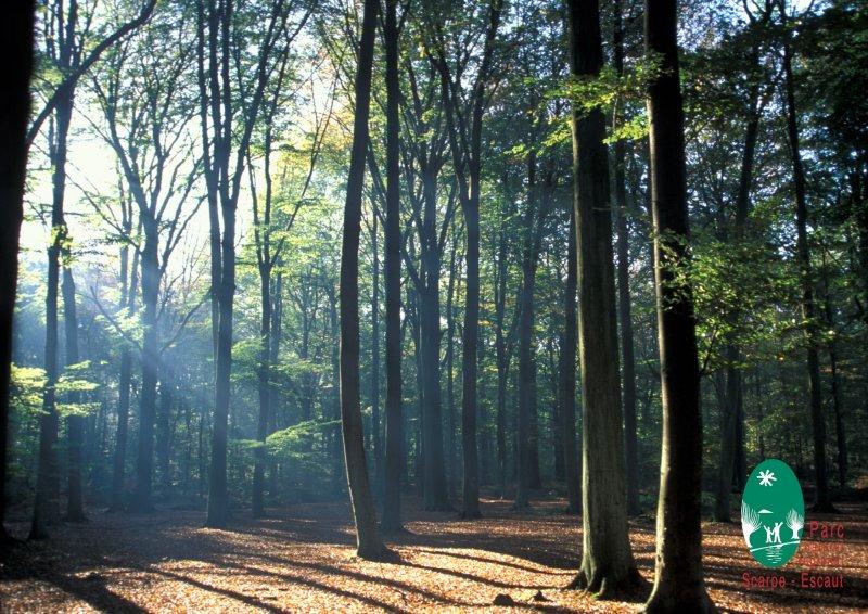 Le Parc Naturel Rgional Scarpe Escaut PNRSE