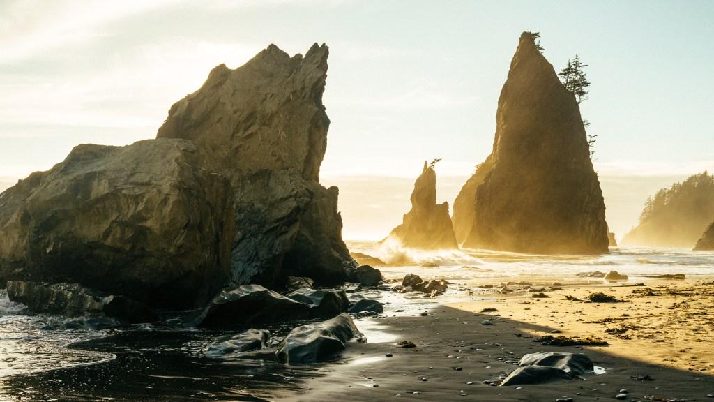 Sea stacks along the Wilderness Coast